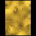 4gold-logo-goud